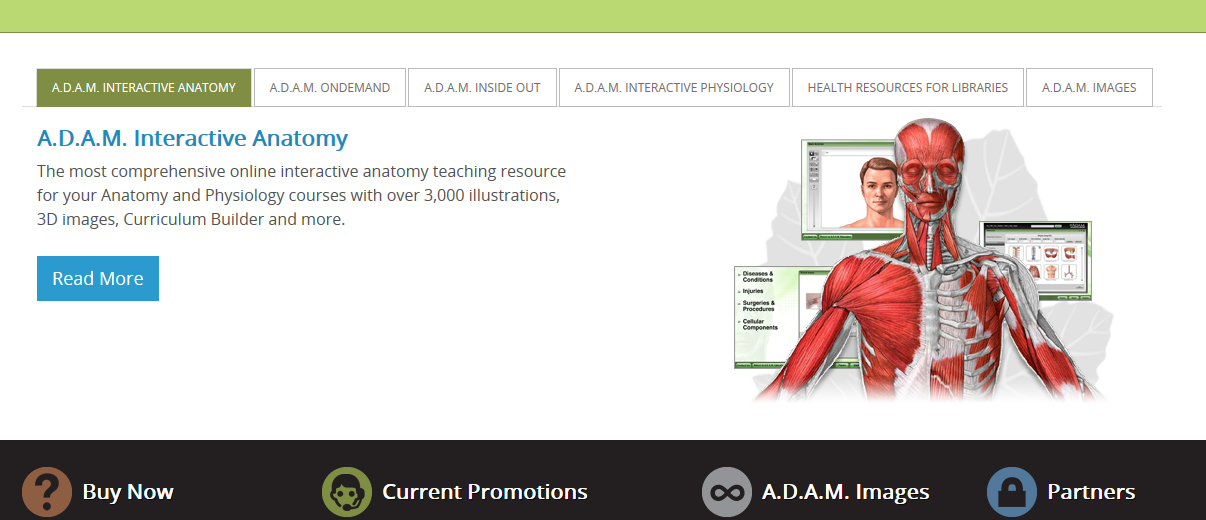 Adam Interactive Anatomy Review For Teachers Common Sense