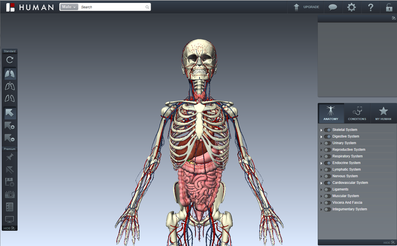 BioDigital Human Review for Teachers | Common Sense Education