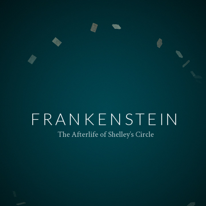 frankenstein a critique of education Critical analysis essay - frankenstein order description you will need a total of two critiques literary criticism collection: (education, professional career.