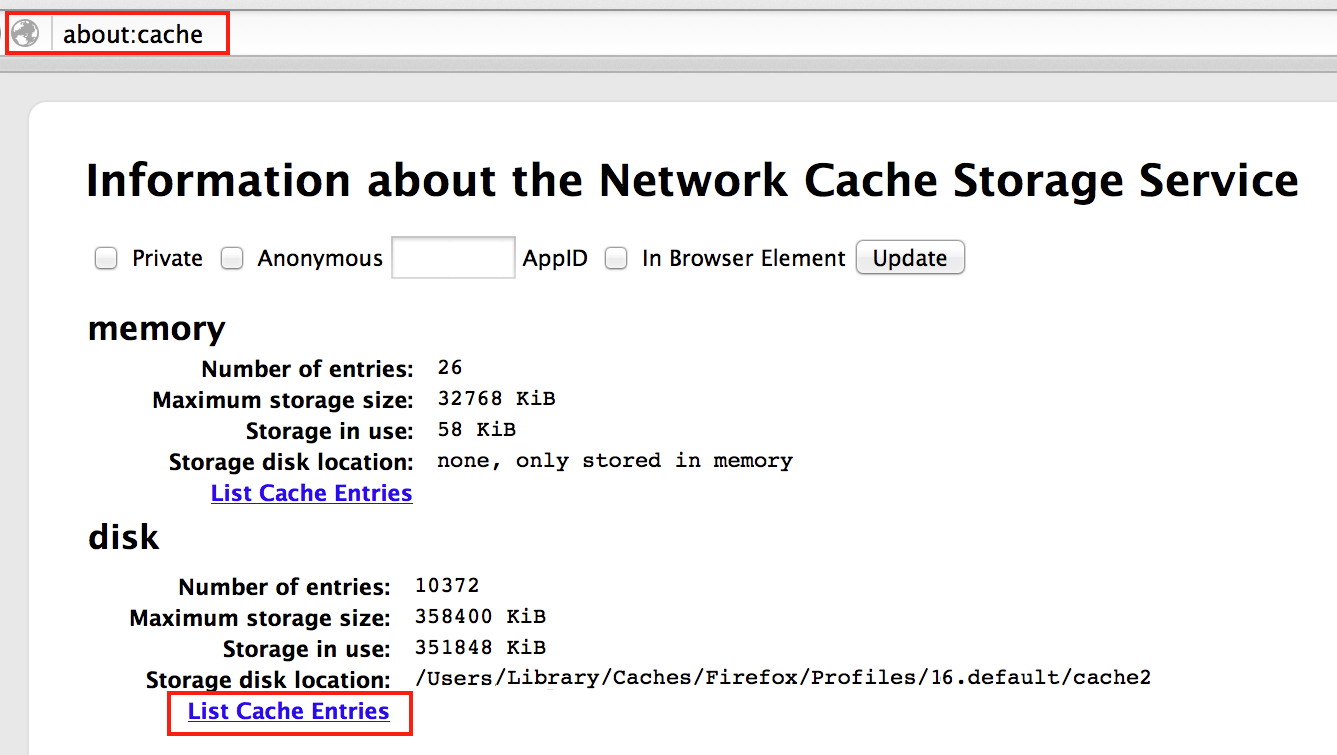 Accessing the browser cache in Firefox