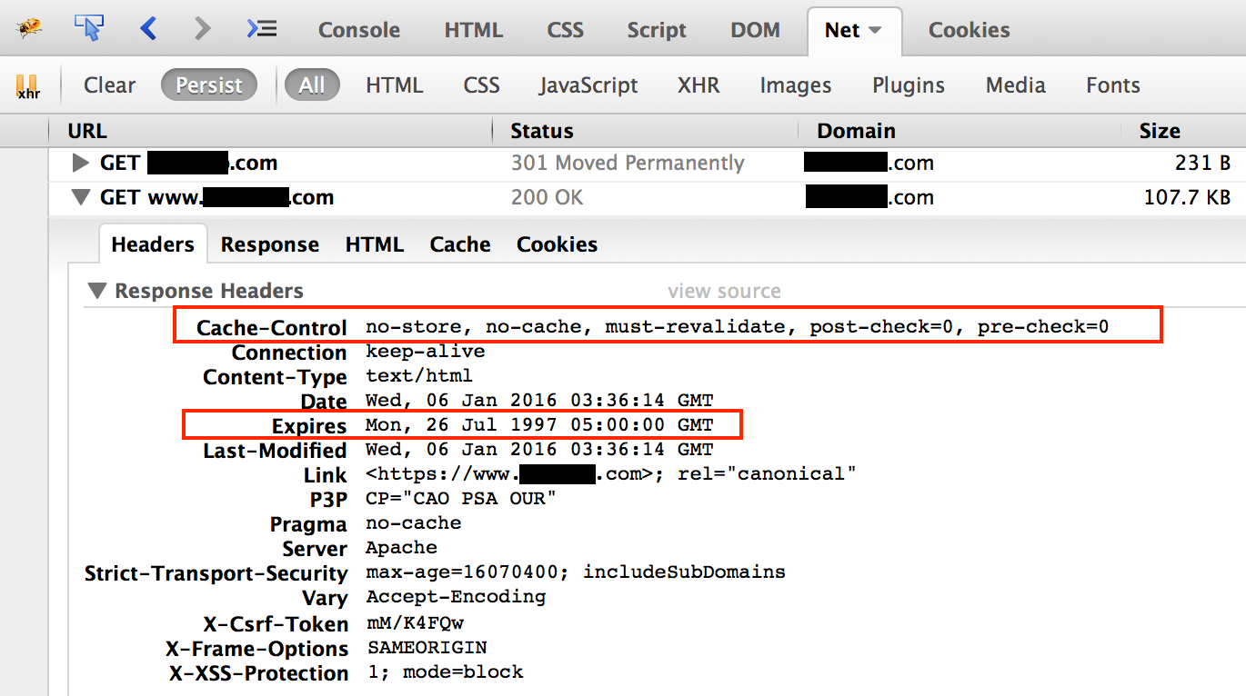 Satisfactory cache directives, displayed in Firebug