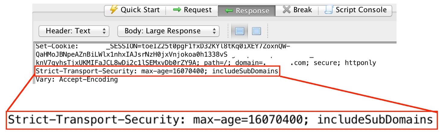 Proper use of Strict Transport Security headers, seen in ZAP