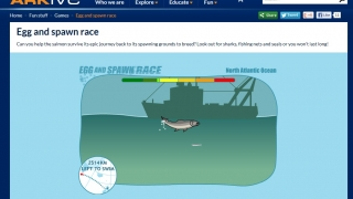 Games like the Arctic Egg and Spawn Race help kids see the dangers some species face.