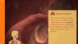 Users can read about the body as they move through it step by step.
