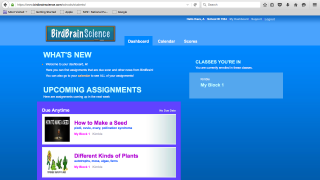The student dashboard shows upcoming assignments and scores.