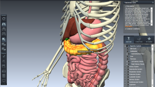 3D images can be manipulated for student exploration.