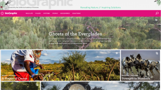 The site advocates for the conservation of animals, places, and nature.
