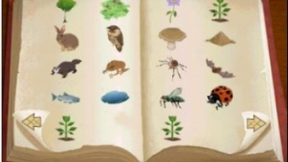 Collect plants and animals in your journal.