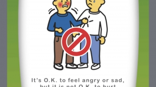 The book about feelings touches on how to handle strong emotions.