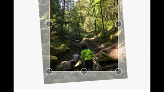 Use freestyle and social media-based cropping templates.
