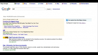 Diigo users can search pages bookmarked by other users or perform a Google search through the site.