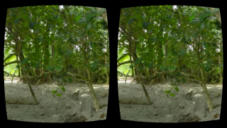 The app is best viewed using a Google Cardboard or Oculus Rift headset.