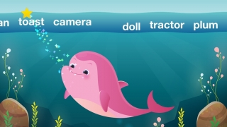 Feed the dolphin all the words that start with the same letter sound.