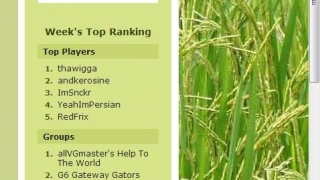 The right sidebar lists individual and group rankings.