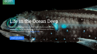 "Voyager includes such quality content as Sir David Attenborough's ""Life in the Ocean Deep"" from BBC Earth."
