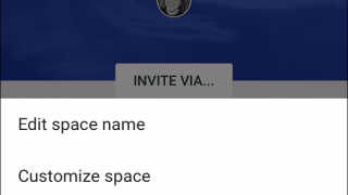 Users can customize features of each of their Google Spaces.