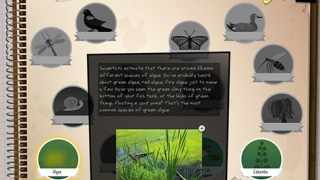 Information about each species is stored in a virtual journal.