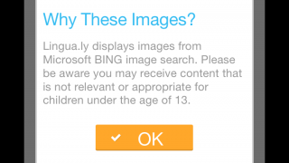 Highlighted words automatically appear on flashcards, which show up with an often iffy Bing image.