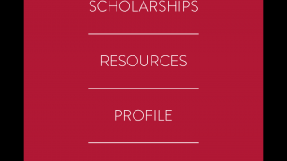 From the dashboard, users can browse essay topics and search for scholarships.
