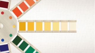 Ordering color shades can be quite challenging!