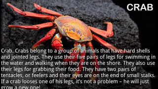 "A crab page from the nonfiction title ""Sea Animals"" is one of 15 pages with vibrant photos and lengthy text. The word ""loses"" is misspelled on this page."