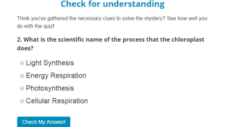 Short, multiple-choice quizzes act as checks for understanding.