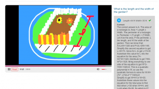 Overly simple animations and complicated procedural explanations will distract and discourage many students.