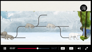 Watch a short video clip that introduces basic evolutionary ideas.