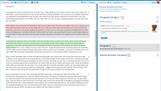 Colorful highlighting can mark different types of comments, and has both public and private options.