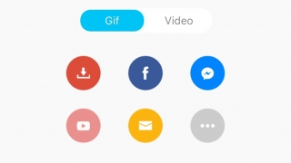 Projects can be shared as videos or GIFs.