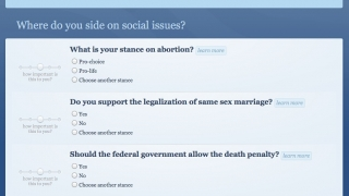 The quiz is organized by issue, and users can weigh in broadly with their opinions.