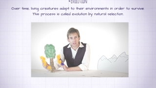 Props in the videos are simple but highly effective for teaching the concepts.