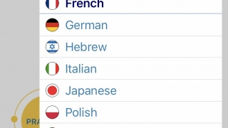 Choose from 13 languages.