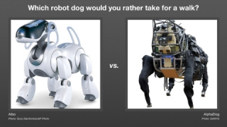 "Vote on robot-related questions in the ""Face Off"" game."