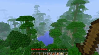 Minecraft jungle biome, one of many environmental types.