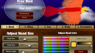 Design your own birds by customizing shape, size, colors, and more.