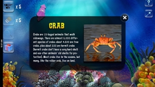 Kids can build an aquarium, play games, and learn fun facts about ocean creatures.