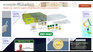 At the Spongelab Marketplace, points can be redeemed for coupons for science materials.