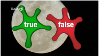 Tigbit videos like True or False ask questions about the core videos.