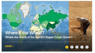 A map shows staple food crops around the world.