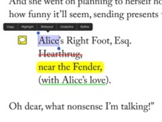Highlight and annotate text while reading or in writing process.