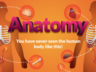 Arloon Anatomy | The Human Body gives a unique view of the human body.