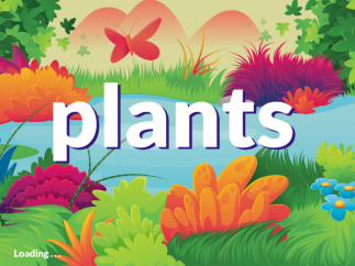 Learn all about plants using interactive simulations.