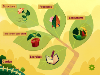 Kids can learn about plant adaptations, processes, and classification.