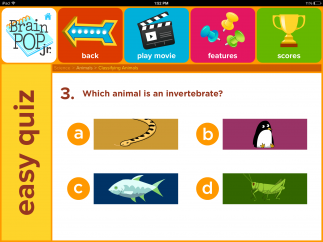 The multiple-choice quizzes don't offer many questions.