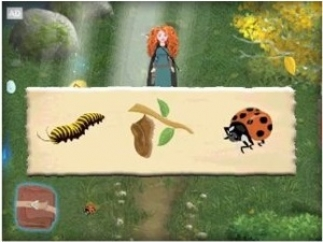What is the lifecycle of a ladybug?