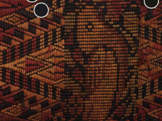 Color capture auto-detects an image's palette, or you can manually move dots.