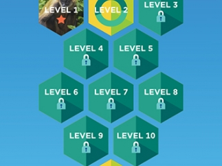 Each main level of difficulty has 10 levels of gameplay plus a challenge round.