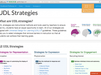 A well-organized, interactive list allows users to easily peruse suggested Universal Design for Learning-based instructional strategies.