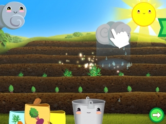 Plant seeds in the garden and provide sunlight and water to help them grow.